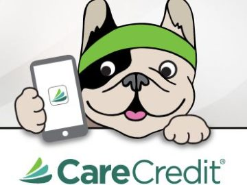 CareCredit Let's Get Digital Sweepstakes and Instant Win Game