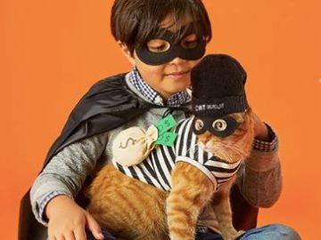 2020 Petco Halloween Make a Scene Photo Contest (Instagram)