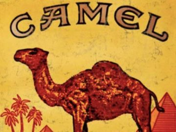 Camel artAffect In Residence Instant Win Game