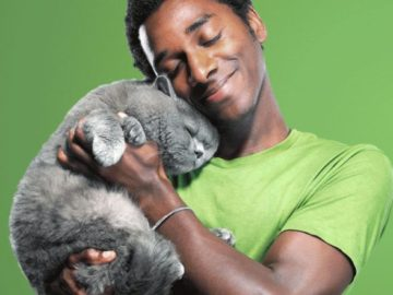 Cat's Pride Twin to Win Contest (Photo Upload)