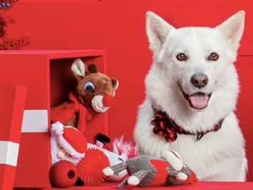 The PetSmart Holiday Pet Hut Sweepstakes