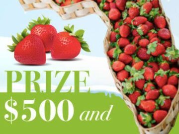 Farm Star Living $500 & Florida Strawberry Sweepstakes