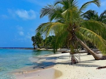 Discover Your Panama Giveaway