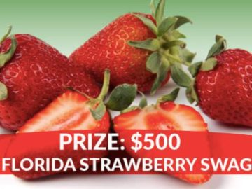 Farm Star Living You're In Luck with Florida Strawberries Sweepstakes