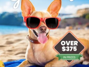 Doggie Dailies Spring Bark Giveaway