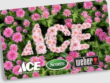 Scott's Backyard O-Ace-Is Sweepstakes