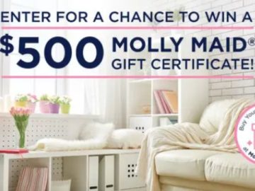 Molly Maid Clean Home for Mother's Day Giveaway