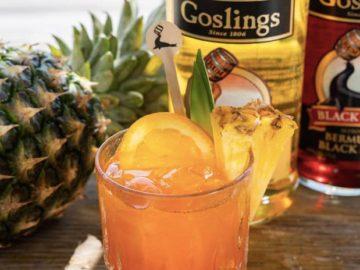 The Goslings Dare to Be Happy Bermuda Giveaway