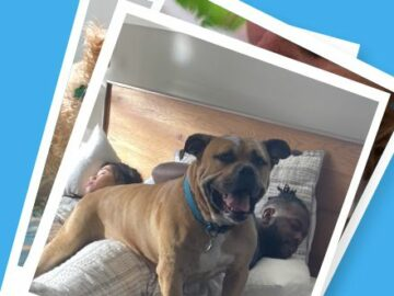 Bissell + Wag! We Are Pet Parents Sweepstakes (Photo)