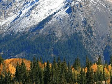 Fall Colors Sweepstakes in Durango