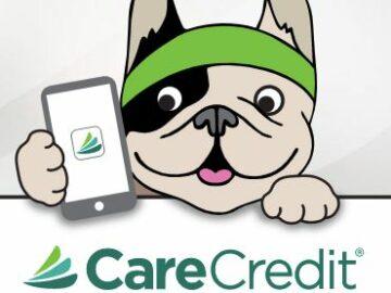 CareCredit Let's Get Digital Sweepstakes (CareCredit Cardholders)